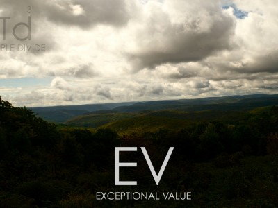 Triple Divide: Exceptional Value